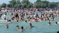 Suriyelilerin denizde attığı sloganlar şoke etti!