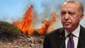 Cumhurbaşkanı Erdoğan'dan tüm Türkiye'ye çağrı