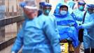 Dünya Sağlık Örgütü'ne  koronavirüs soruşturması