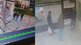 Ankara'daki köpek katliamının görüntüleri çıktı!