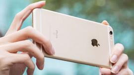 11 çeşit yeni iPhone modeli onaylandı