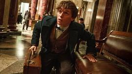 Harry Potter filmlerini sevenler sinemaya!