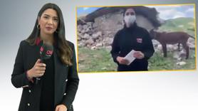 CNN Türk muhabiri eşek esprilerine sert çıktı
