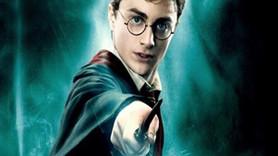 Harry Potter deliydi, Hogwarts bir akıl hastanesiydi