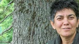 Gazeteci Hanife Şenyüz hayatını kaybetti