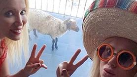 Kurbanlık koyunu Çeşme'ye götürdü