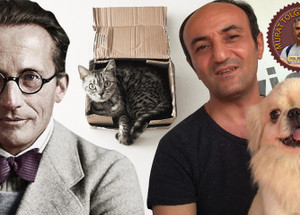 Ersin'in köpeği Schrödinger'in kedisine karşı!