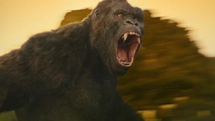 Dev goril Kong salonları titretmeye geliyor!