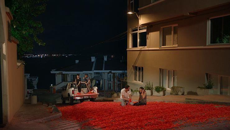 Onur Tuna'dan 100 bin gül yaprağıyla evlilik teklifi - Sayfa 1