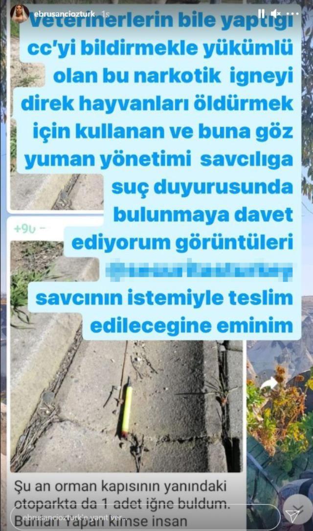 Ebru Şancı'dan kan donduran iddialar - Sayfa 4
