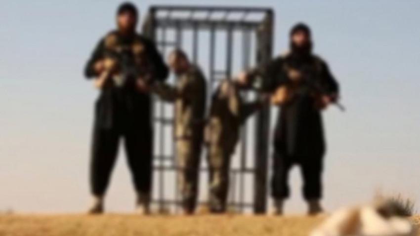 İsmail Saymaz'dan vahim iddia: İki Türk askerini yaktıran IŞİD kadısı Türkiye'de serbest geziyor!