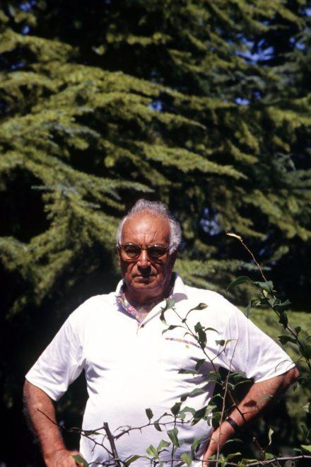 Yaşar Kemal 95 yaşında... - Sayfa 2
